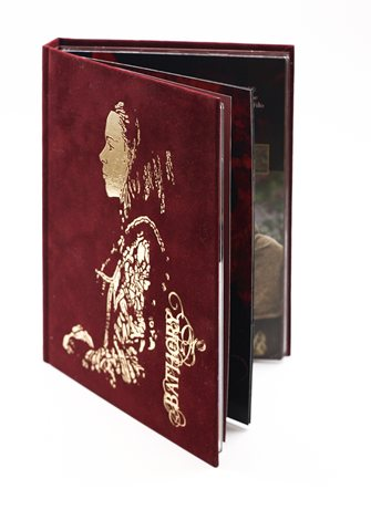 DVD-book-with-velvet-cover-and-hot-foil
